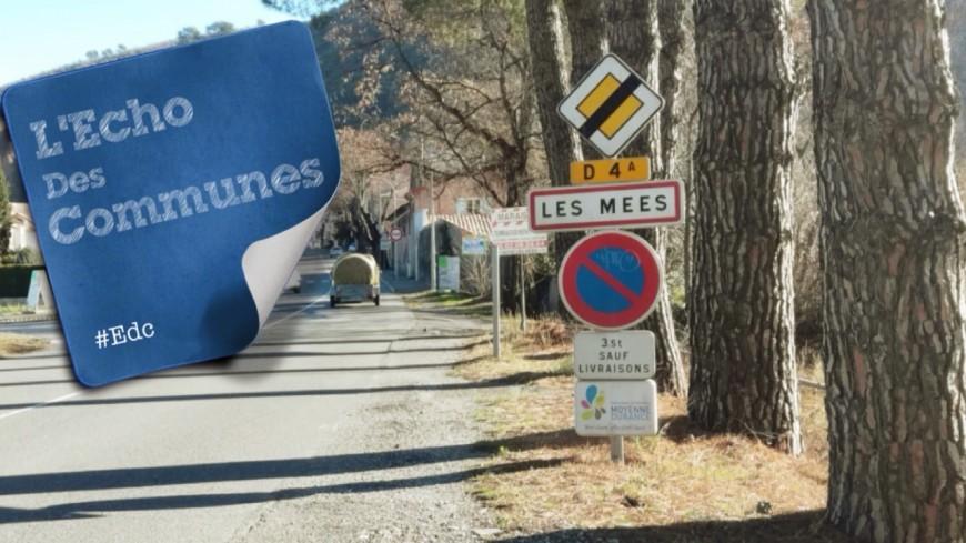 Alpes de Haute-Provence: l'Association des Amis des Mées pour valoriser le territoire
