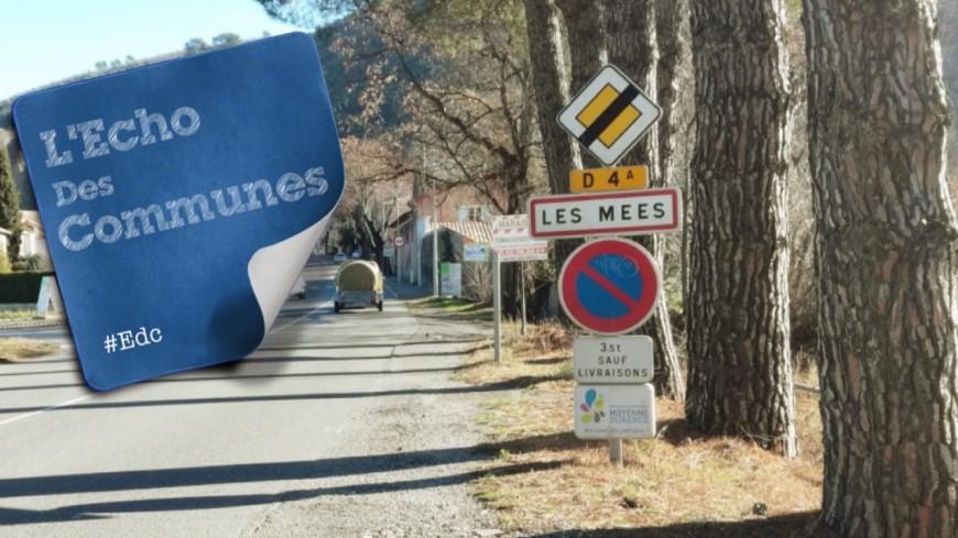 Alpes de Haute-Provence : un sentier pour mieux découvrir les Pénitents des Mées
