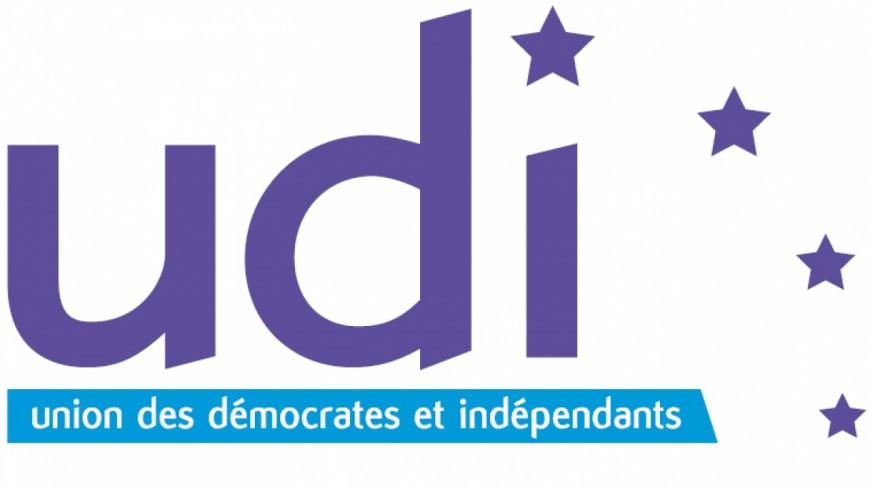 Alpes du Sud : législatives, l'UDI rappelle que le choix des candidats « n'engage que Les Républicains »