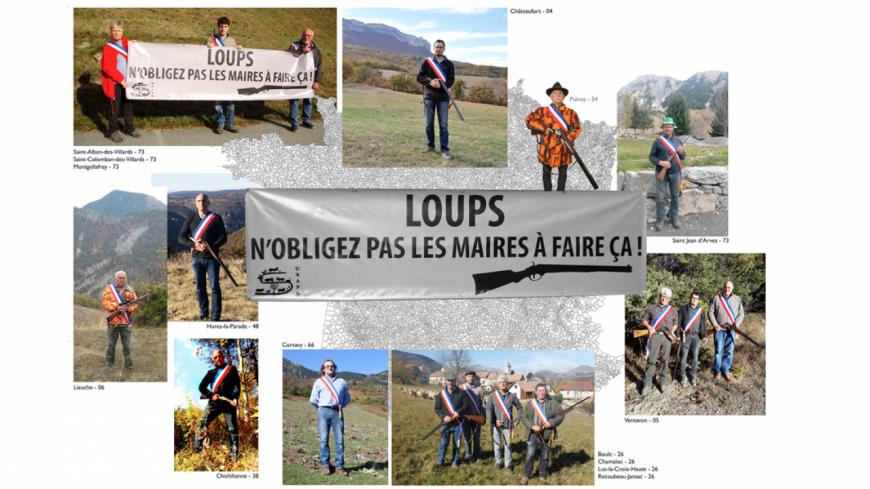 Alpes du Sud  : des maires posent fusils en mains contre le loup