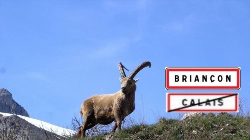 Hautes-Alpes : migrants, une pétition qui fait débat à Briançon