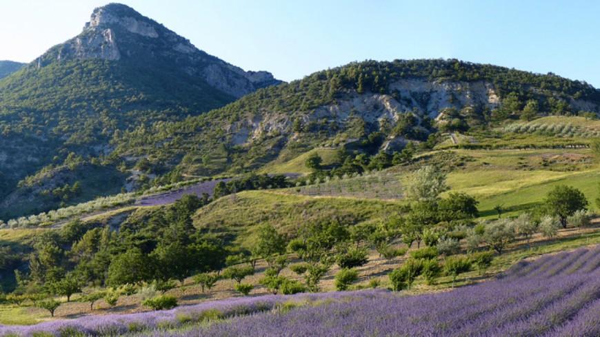 Alpes du Sud : des réunions pour envisager le futur du Parc des Baronnies
