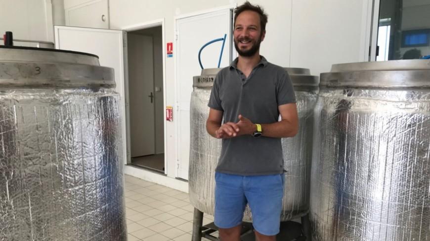 Alpes de Haute-Provence : bientôt de la bière « made in » Sisteron