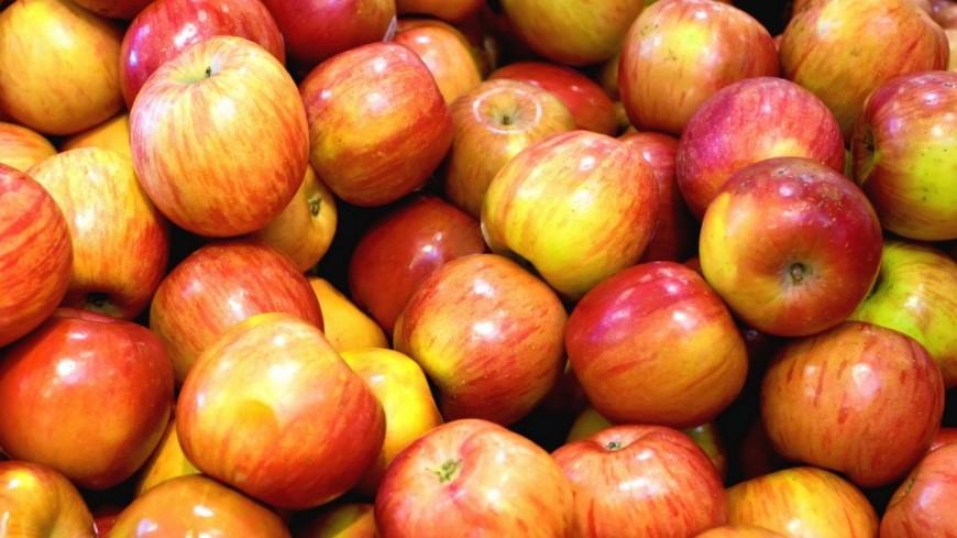 Alpes du Sud : Christian Estrosi veut « sauver la pomme des Alpes du Sud de la faillite »