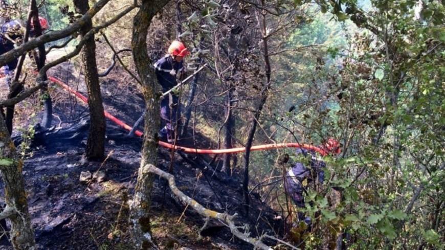 Alpes de Haute-Provence : une 50aine de pompiers mobilisée sur un feu de forêt