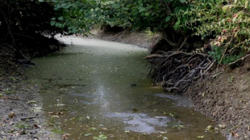Alpes de Haute-Provence : l'état de sécheresse se dégrade, d'importantes mesures de restrictions sont prises