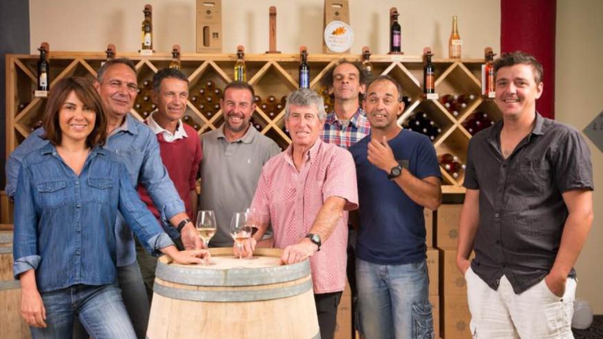 Hautes-Alpes : « vins des Hautes-Alpes », un nouveau site internet pour la promotion des vins du territoire