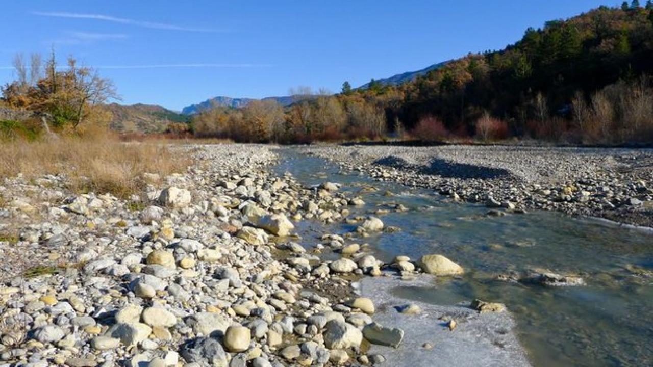 Alpes de haute provence alerte s cheresse d clench e sur for Haute provence info
