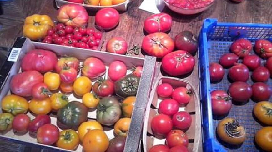 Hautes-Alpes : Journée pour les jardiniers amateurs ce dimanche à La Roche des Arnauds avec Slow food.