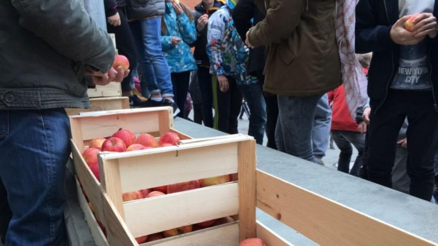 Témoin du Jour : Bruno André, FDSEA 05, Un Fruit à la Récré