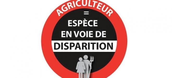 Alpes de Haute-Provence : « nous voulons vivre de notre métier » crie la FDSEA